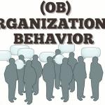 Organization Theory And Behaviour study