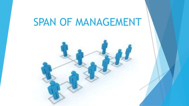 span-of-management